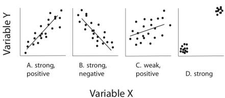 Correlations are hard to interpret the horizontal axis represents one variable x and the vertical axis represents a different variable y with values of x and y increasing according to ccuart Gallery